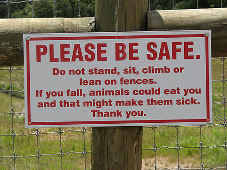 PLEASE BE SAFE. Do not stand, sit, climb or lean on fences. If you fall, animals cound eat you and that might make them sick. Thank you