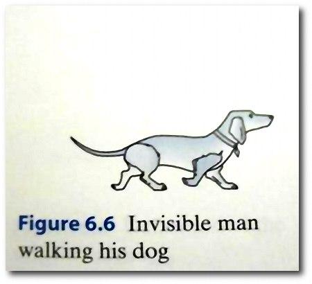 Invisible man walking his dog.