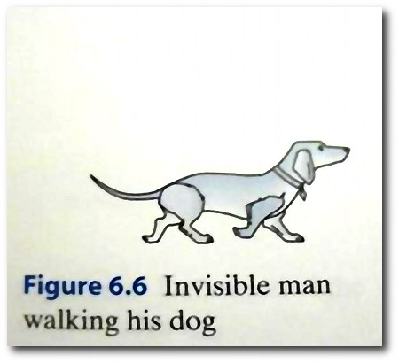 Invisible man walking his dog.