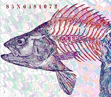 Fisch (Detail der 1000-Franken-Note aus einer Ersatzserie)