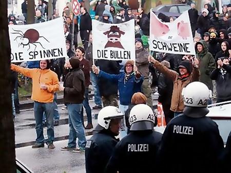 DIE SPINNEN - DIE BULLEN - SCHWEINE