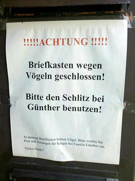 Achtung! Briefkasten wegen Vögeln geschlossen! Bitte den Schlitz bei GÜnther benutzen!