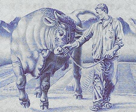 Komm mit, du plöde Kuh!