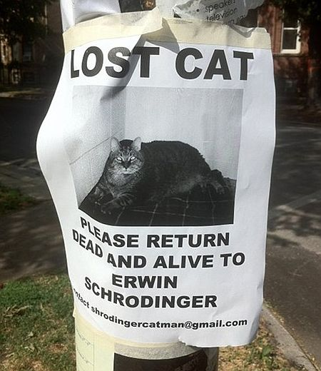 Lost Cat. Please return dead and alive to Erwin Schrödinger