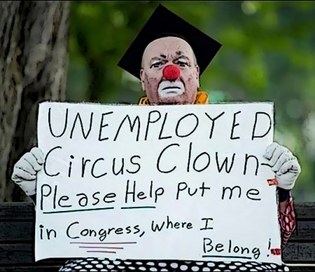 Unemployed Circus Clown Please Help Put me in Congress, where I Belong!