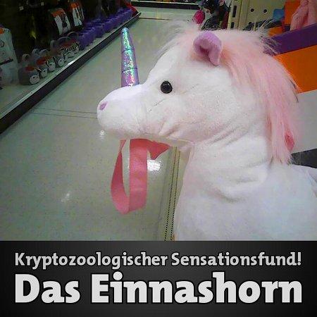 Kryptozoologischer Sensationsfund: Das Einnashorn
