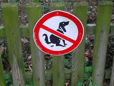 Nicht für scheißende Hunde