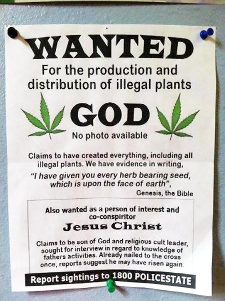 Wanted -- For the production and distribution of illegal plants: God -- No photo available -- Claims to have created everything, including all illegal plants. We have evidence in writing: 'I have given you every herb bearing seed, which is upon the face of earth', Genesis, the Bible -- Also wanted as a person of interest an co-conspiritor: Jesus Christ. Clains to be son of God and religious cult leader, sought for interview in regard to knowledge of father activities. Already nailed to the cross once, reports suggest hey may have risen again. Report sightings to 1800 POLICESTATE