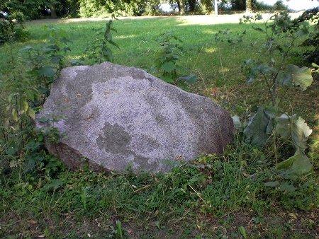 Brennnessel, Stein und Klette