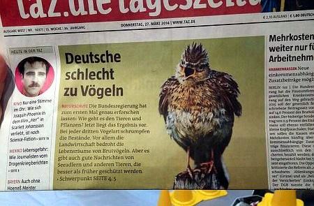 Schlagzeile taz: Deutsche schlecht zu Vögeln