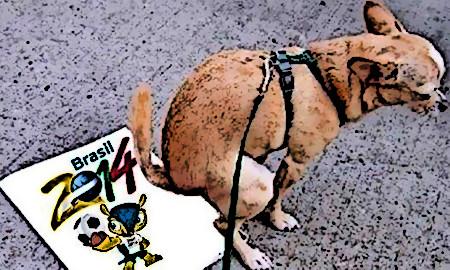 Hund, der gleich auf einen Spielplan der FIFA-Fußball-Geldmeisterschaft 2014 kacken wird.
