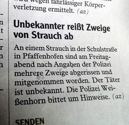 Unbekannter reißt Zweige von Strauch ab -- An einem Strauch in der Schulstraße in Pfaffenhofen sind am Freitagabend nach Angaben der Polizei mehrere Zweige abgerissen und mitgenommen worden. Der Täter ist unbekannt. Die Polizei Weißenhorn bittet um Hinweise.