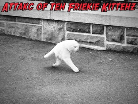 Attakc of the Friekie Kittehz!