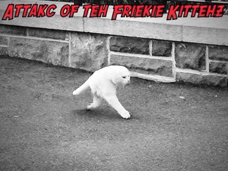 Attakc of the Friekie Kittehz!