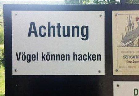 Aufgestelltes Hinweisschild: Achtung! Vögel können hacken!