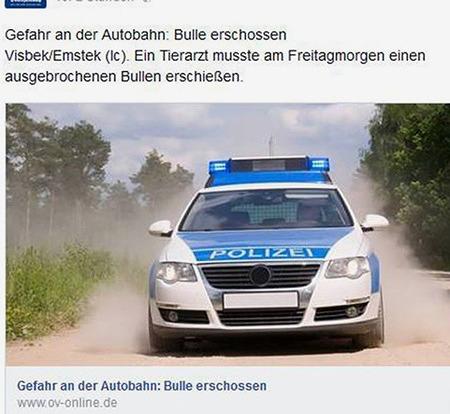 Meldung: 'Gefahr an der Autobahn: Bulle erschossen -- Visbek/Emstek (lc). Ein Tierarzt musste am Freitagmorgen einen ausgebrochenen Bullen erschießen.' -- Darunter ein Symbolbild eines Streifenwagens mit der Bildunterschrift: 'Gefahr an der Autobahn: Bulle erschossen'