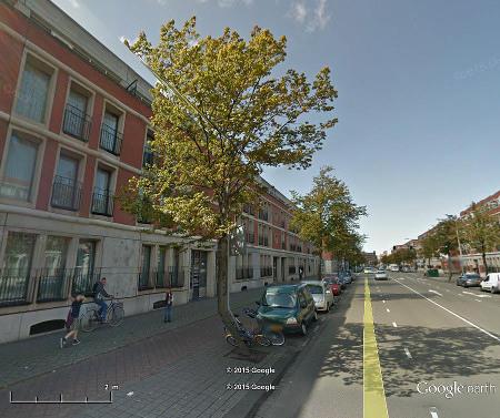 Durch einen Darstellungsfehler lustig geknickter Baum in Google Earth
