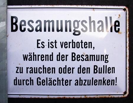 Besamungshalle -- Es ist verboten, während der Besamung zu rauchen oder den Bullen durch Gelächter abzulenken!