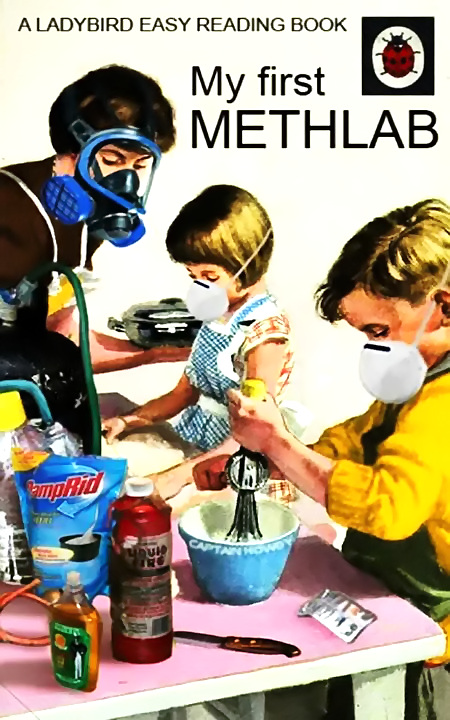 A Ladybird Easy Reading Book -- My first Methlab