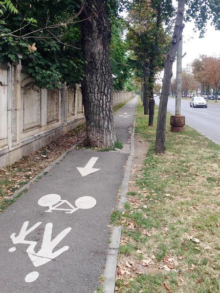 Eine Straße, neben der ein markierter Rad- und Fußweg ist. Mitten auf diesem Rad- und Fußweg wächst ein alter, breiter Baum, so dass der Weg unbenutzbar ist. Dieser Baum stand dort erkennbar schon bei der Anlage des Weges, es ist also planerische Absicht, dass der Weg nicht benutzbar ist. Die Autos haben freie Fahrt.
