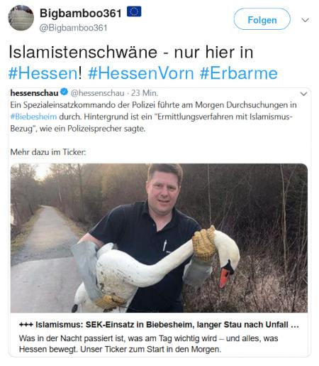 @Bigbamboo361@twitter.com zitiert die @hessenschau@twitter.com -- Ein Spezialeinsatzkommando der Polizei führte am Morgen Durchsuchungen in #Biebesheim durch. Hintergrund ist ein 'Ermittlungsverfahren mit Islamismus-Bezug', wie ein Polizeisprecher sagte. Dazu der Teaser des verlinkten Beitrages mit dem Symbolbild eines Mannes, der einen Schwan trägt. -- Text @Bigbamboo361@twitter.com dazu: Islamistenschwäne, nur hier in #Hessen! #HessenVorm #Erbarme