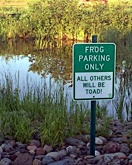 FROG PARKING ONLY -- ALL OTHERS WILL BE TOAD