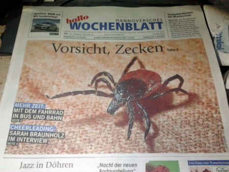 Titelseite der aktuellen Reklamezeitung 'Hannoversches Wochenblatt' mit der Abbildung einer großen Zecke und dem großen Text 'Vorsicht Zecken'.