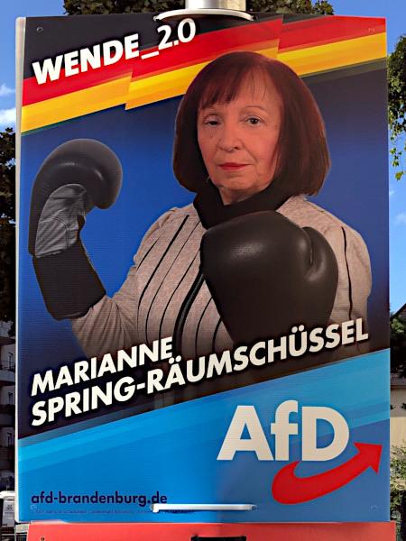 AfD-Wahlplakat aus dem Brandenburger Landtagswahlkampf 2019. Motiv ist die Kandidatin Marianne Spring-Räumschüssel, die mit Boxhandschuhen schlecht gedeckt herumsteht und sich im Ring sofort ein K.O. abholen würde. WENDE_2.0