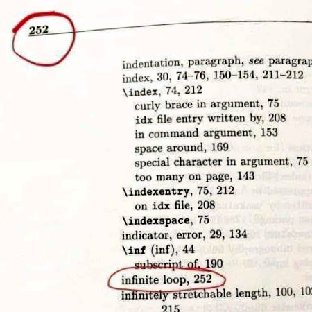 Index eines Buches, aufgeschlagen auf Seite 252. Der Eintrag 'infinite loop' verweist auf Seite 252.