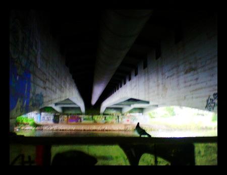 Stark mit Gimp nachbearbeitetes Foto einer Taube unter einer Brücke