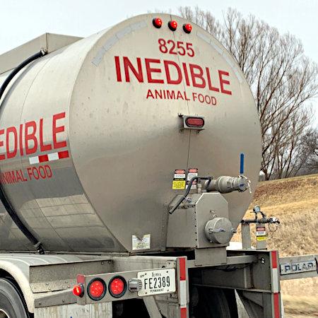 Tankwagen mit Aufschrift: Inedible animal food