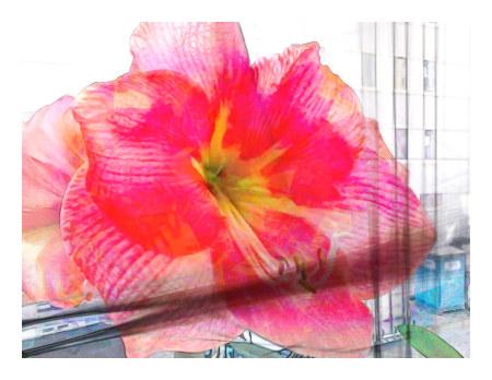 Stark bearbeitetes Foto einer blühenden Pflanze auf einer Fensterbank