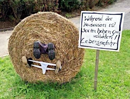 Während der Heusaison ist Sex im hohen Gras verboten. Lebensgefahr!