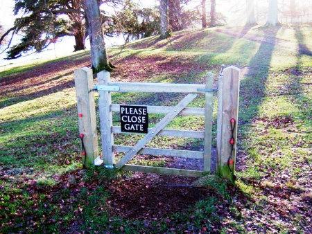 Mitten im Wald stehendes Tor ohne jeden Zaun. Mit einem Schild 'Please close gate!'.