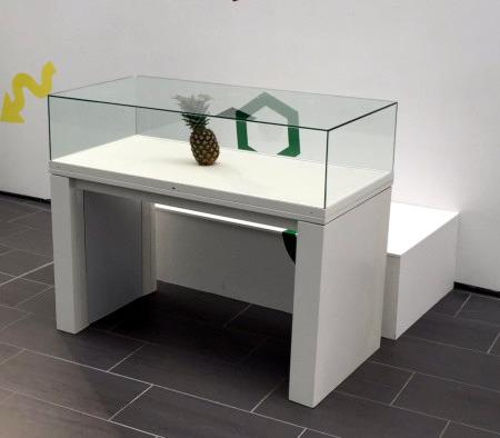 Foto einer Ananas unter einer Glasvitrine in einer Ausstellung